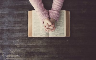 Understanding the Good Word: How to Read the Bible Effectively