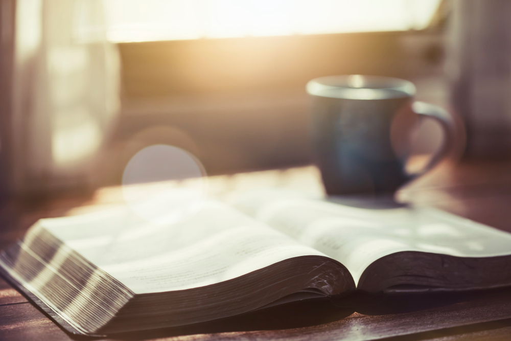 5 Scriptures On Purpose and Vision